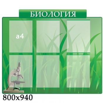 Стенд биология зеленый
